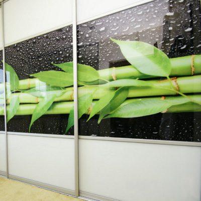 Slenkančios durys su nuotraukos intarpu