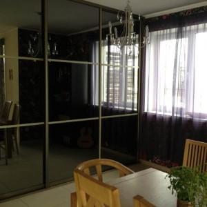 Stumdomos durys su pilku veidrodžiu