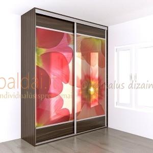 Stumdomos durys. Plokste ir stiklas su nuotrauka 9